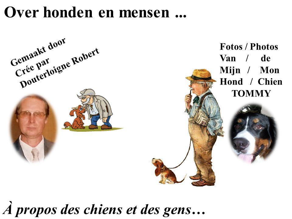 Over honden en mensen ... À propos des chiens et des gens…