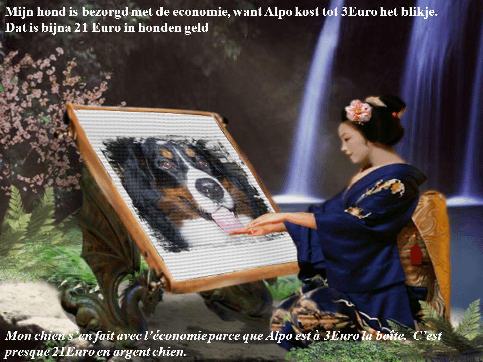 Mijn hond is bezorgd met de economie, want Alpo kost tot 3Euro het blikje. Dat is bijna 21 Euro in honden geld