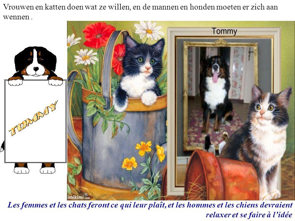 Vrouwen en katten doen wat ze willen, en de mannen en honden moeten er zich aan wennen .