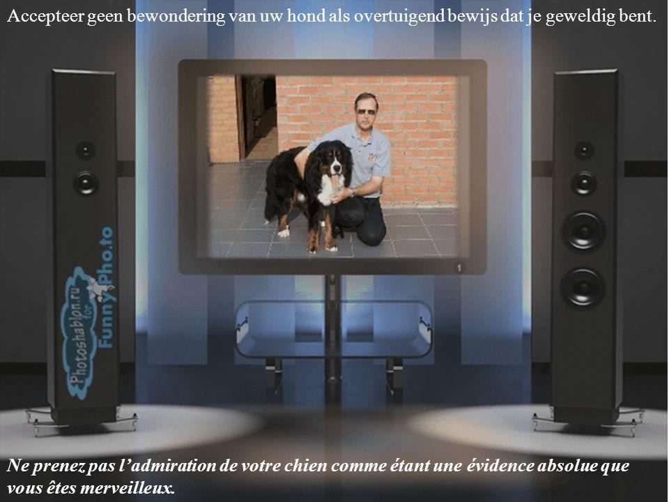 Accepteer geen bewondering van uw hond als overtuigend bewijs dat je geweldig bent.
