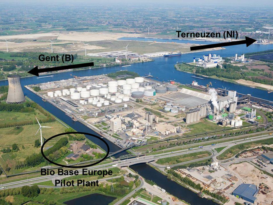 Terneuzen (Nl) Gent (B) Bio Base Europe Pilot Plant