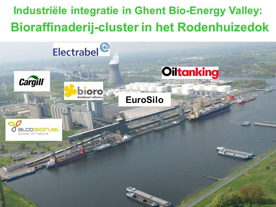 Industriële integratie in Ghent Bio-Energy Valley: Bioraffinaderij-cluster in het Rodenhuizedok