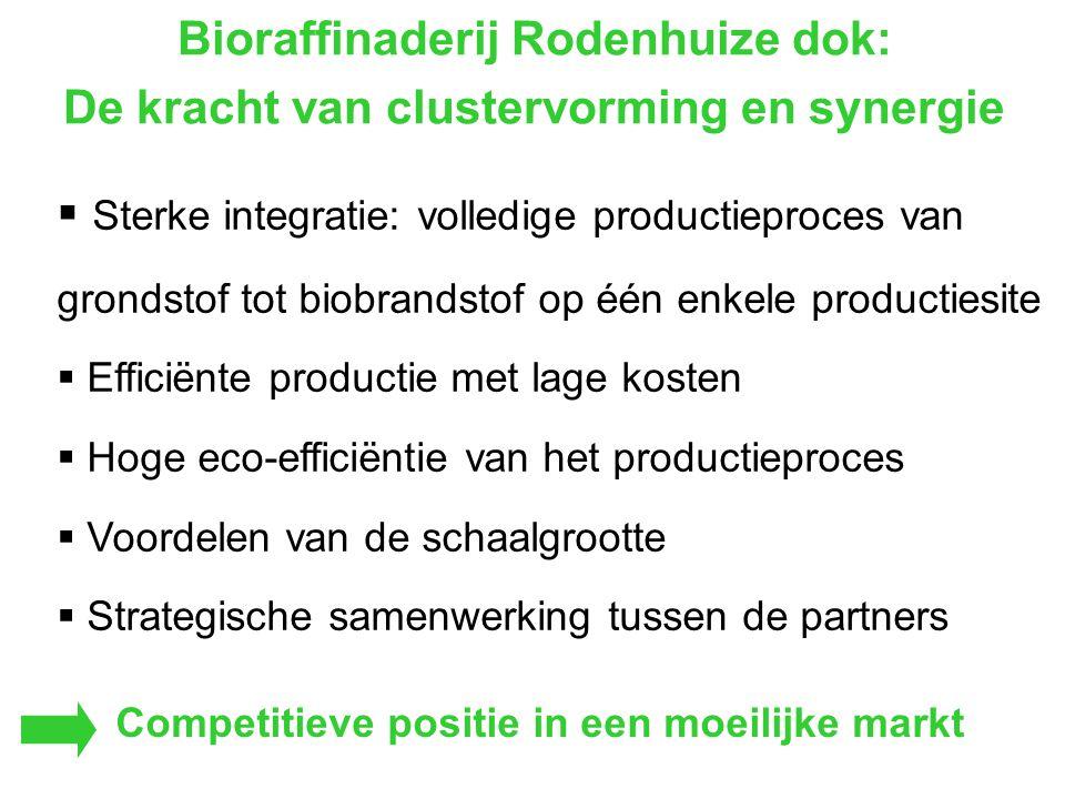 Bioraffinaderij Rodenhuize dok: De kracht van clustervorming en synergie