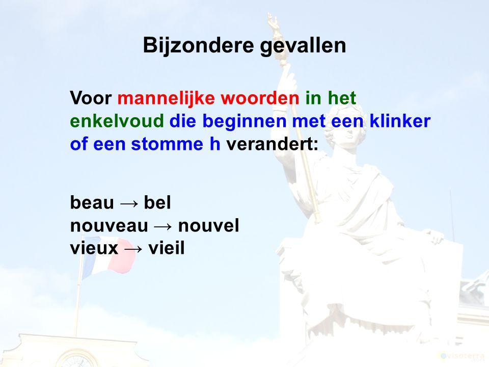 Bijzondere gevallen beau → bel nouveau → nouvel vieux → vieil