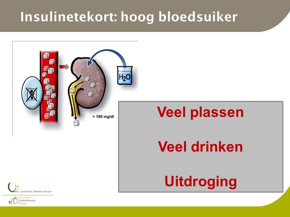 Insulinetekort: hoog bloedsuiker