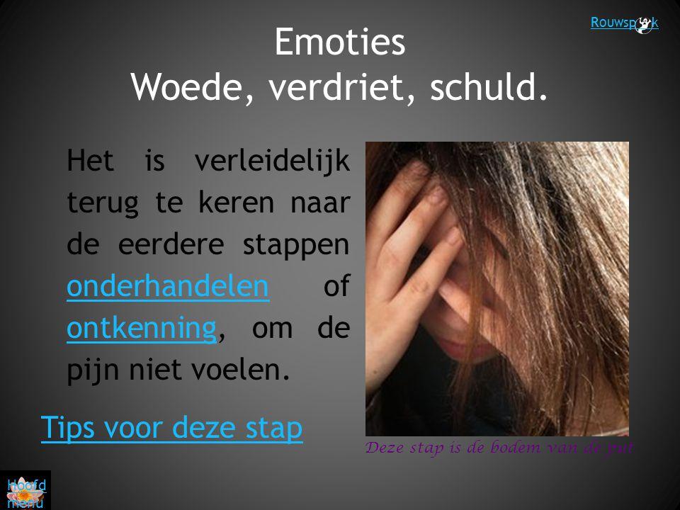 Emoties Woede, verdriet, schuld.