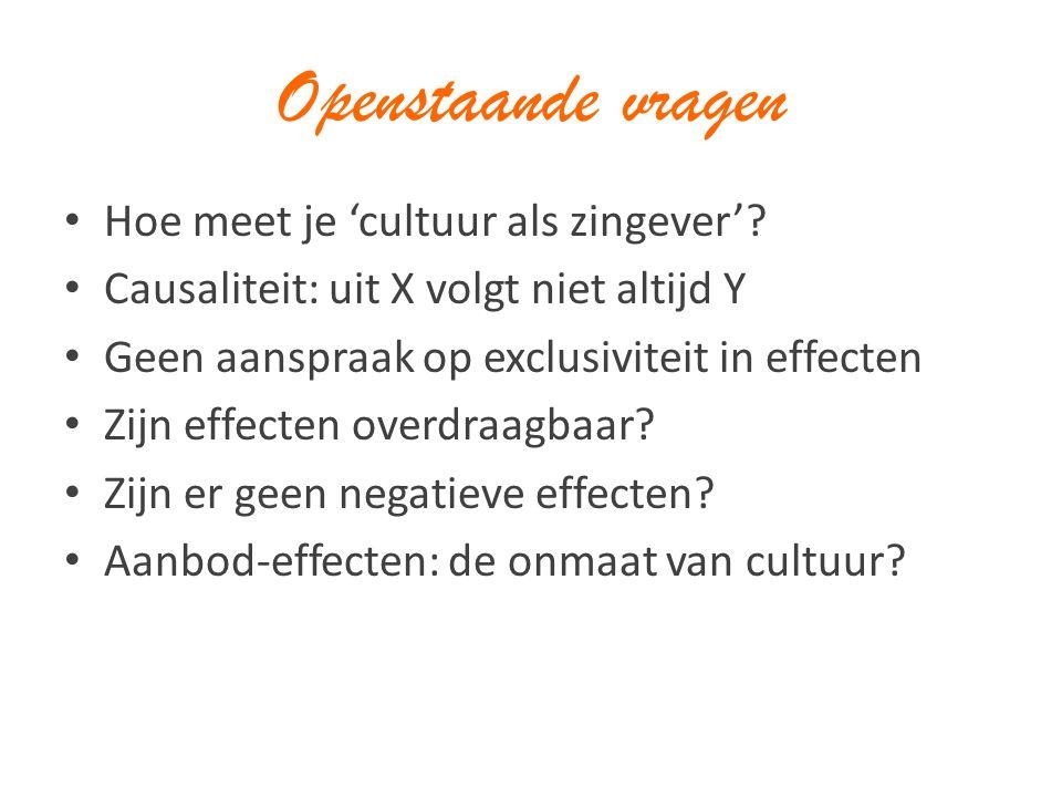 Openstaande vragen Hoe meet je 'cultuur als zingever'