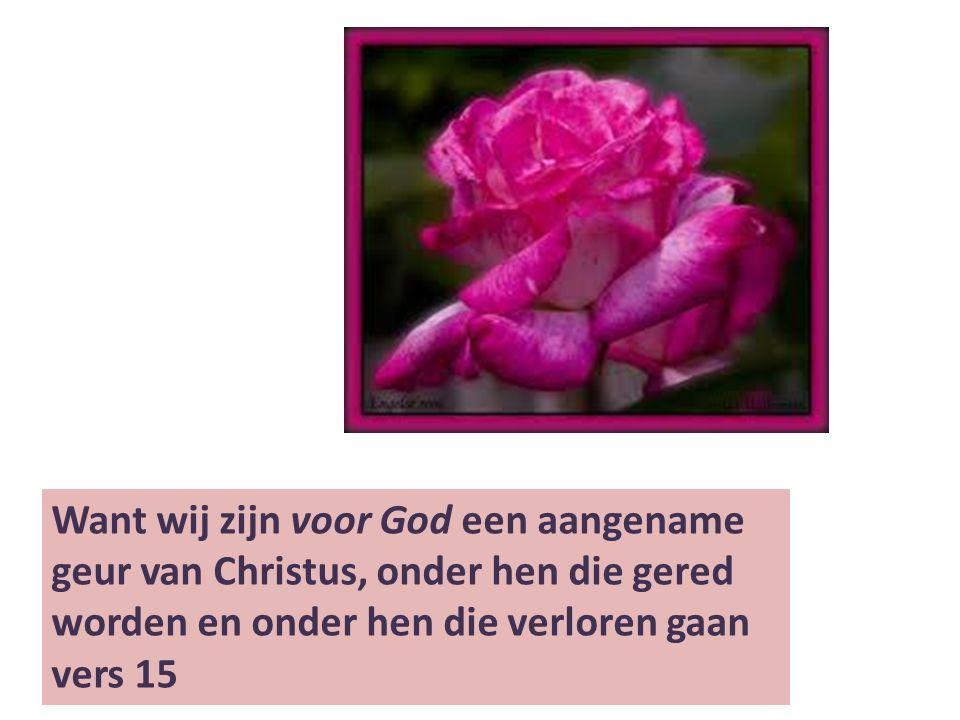 Want wij zijn voor God een aangename geur van Christus, onder hen die gered worden en onder hen die verloren gaan vers 15