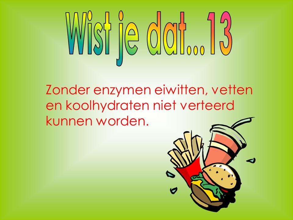 Wist je dat...13 Zonder enzymen eiwitten, vetten en koolhydraten niet verteerd kunnen worden.