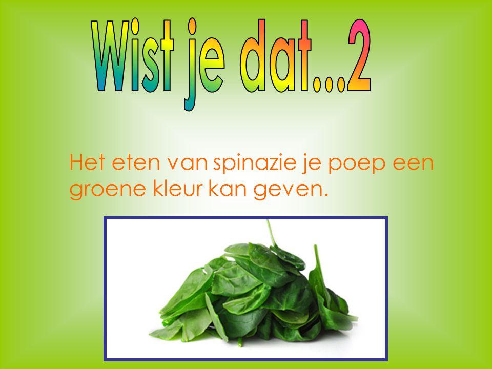 Wist je dat...2 Het eten van spinazie je poep een groene kleur kan geven.