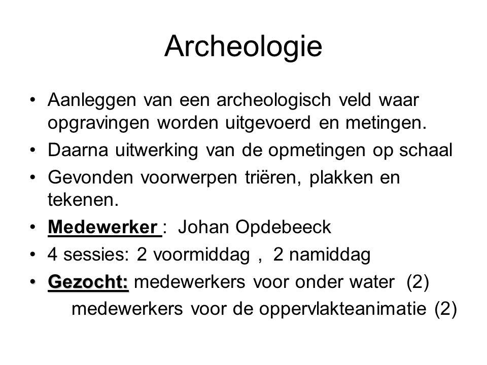 Archeologie Aanleggen van een archeologisch veld waar opgravingen worden uitgevoerd en metingen. Daarna uitwerking van de opmetingen op schaal.