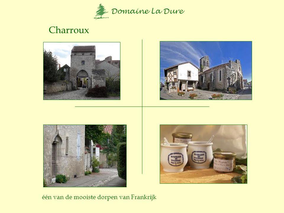 Charroux één van de mooiste dorpen van Frankrijk