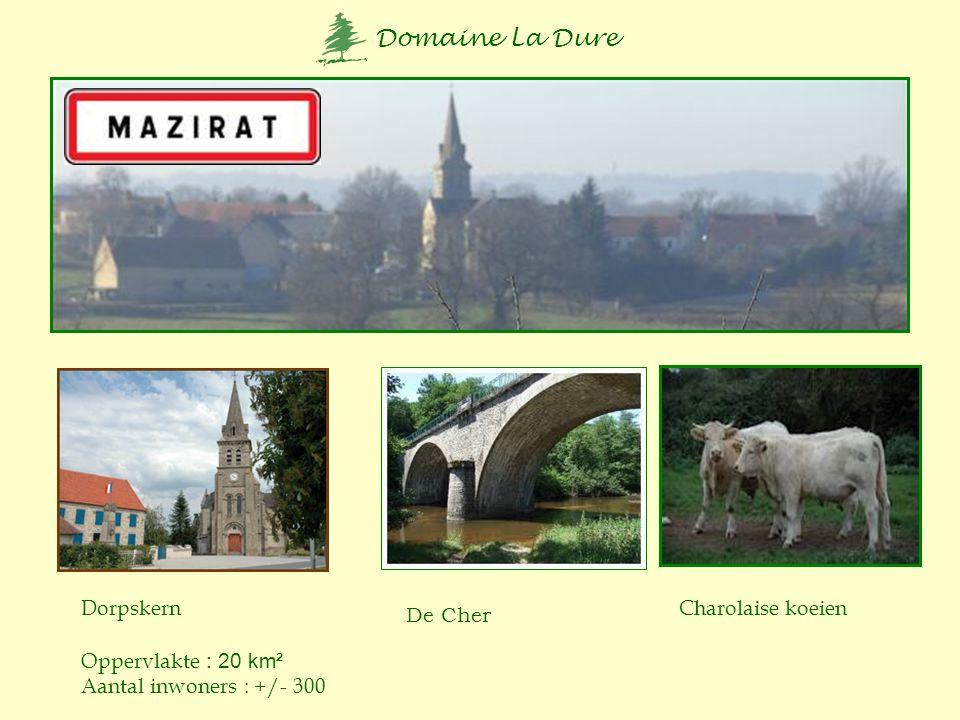 Dorpskern Charolaise koeien De Cher Oppervlakte : 20 km² Aantal inwoners : +/- 300