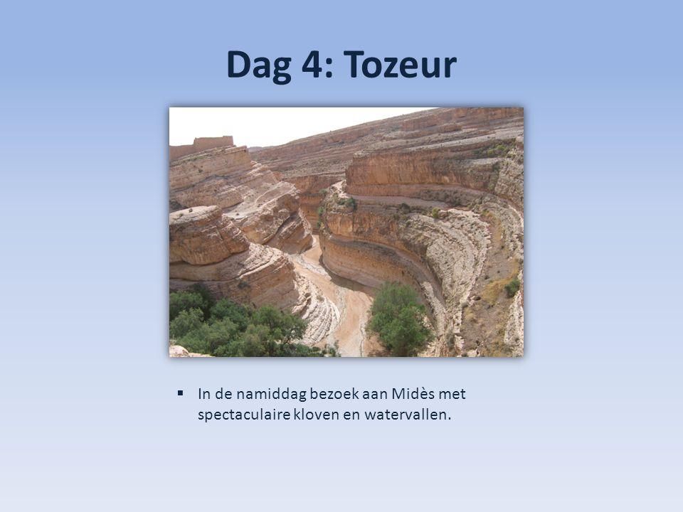 Dag 4: Tozeur In de namiddag bezoek aan Midès met spectaculaire kloven en watervallen.