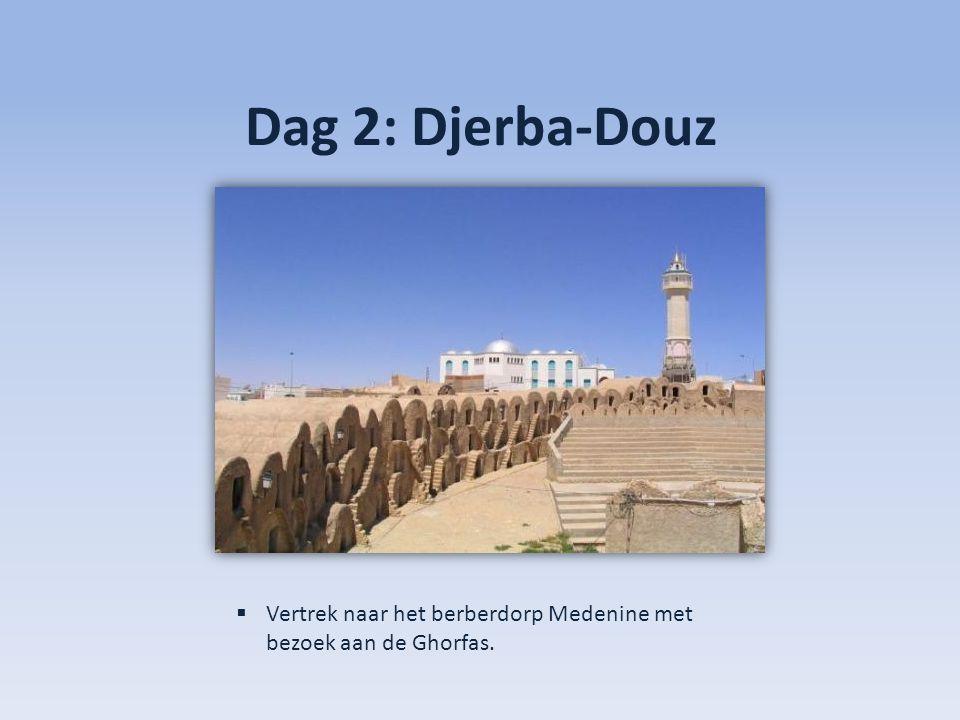 Dag 2: Djerba-Douz Vertrek naar het berberdorp Medenine met bezoek aan de Ghorfas.