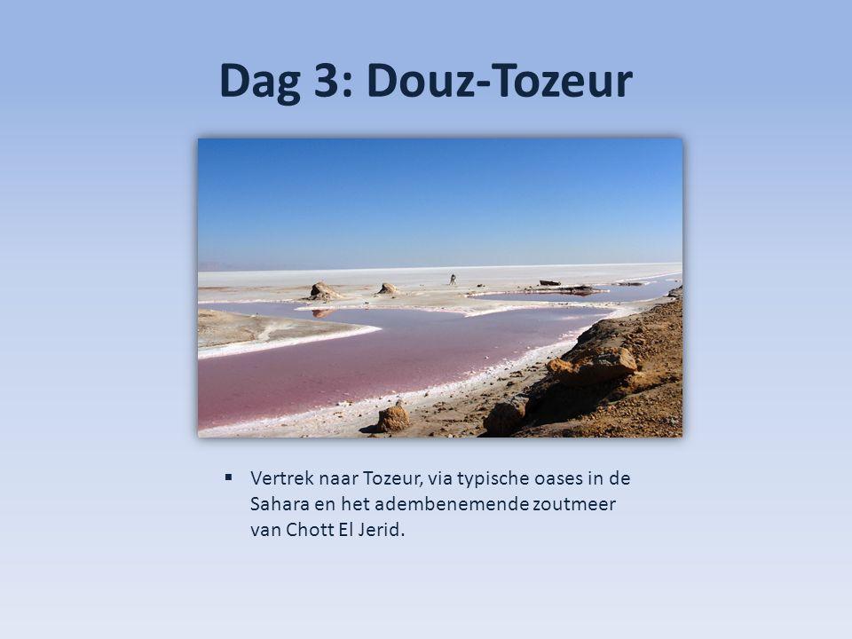 Dag 3: Douz-Tozeur Vertrek naar Tozeur, via typische oases in de Sahara en het adembenemende zoutmeer van Chott El Jerid.