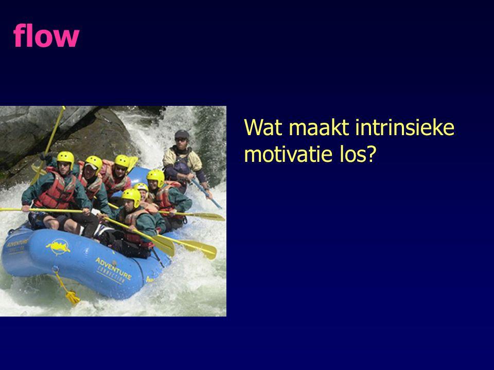 flow Wat maakt intrinsieke motivatie los