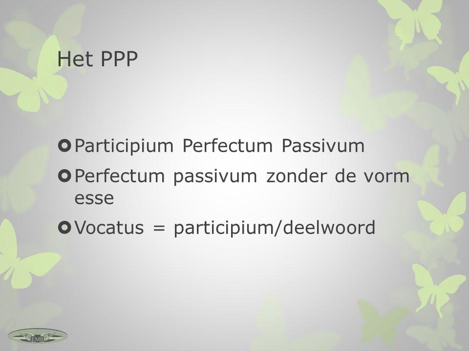 Het PPP Participium Perfectum Passivum