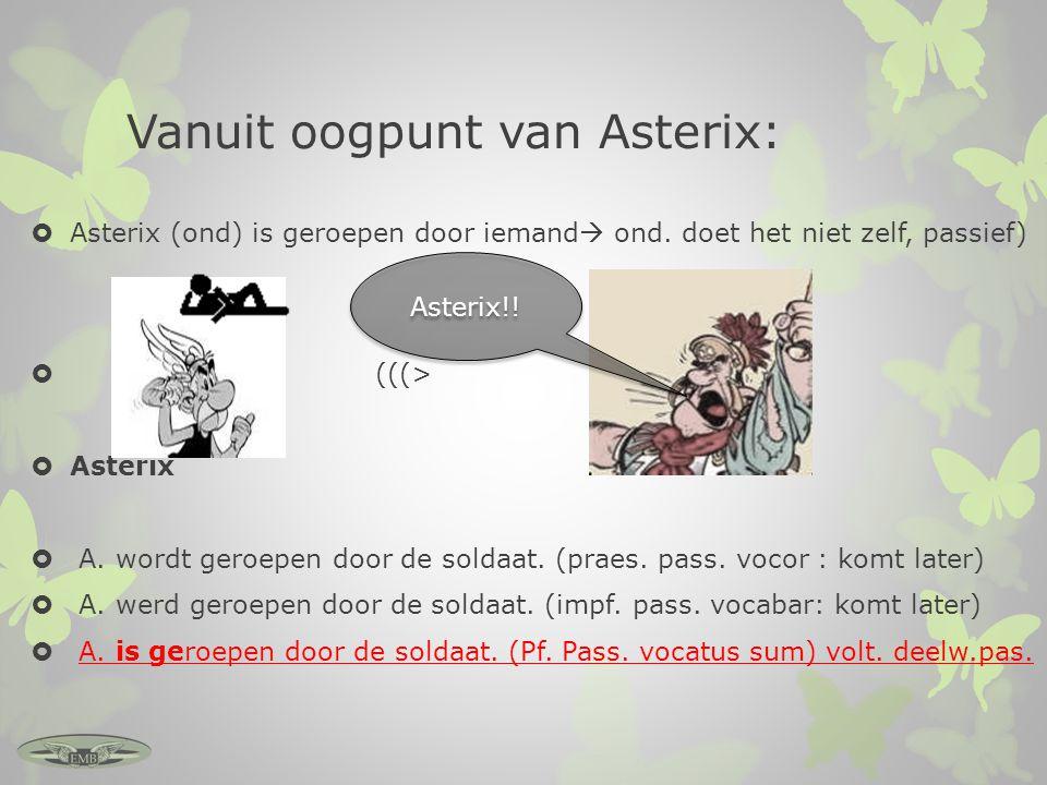 Vanuit oogpunt van Asterix: