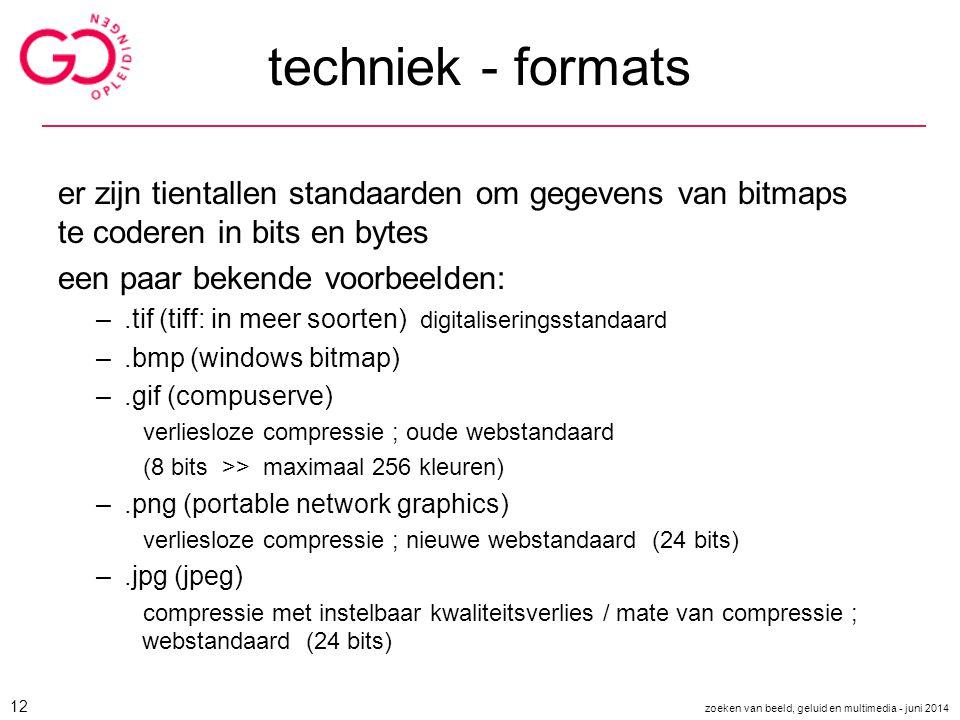 techniek - formats er zijn tientallen standaarden om gegevens van bitmaps te coderen in bits en bytes.