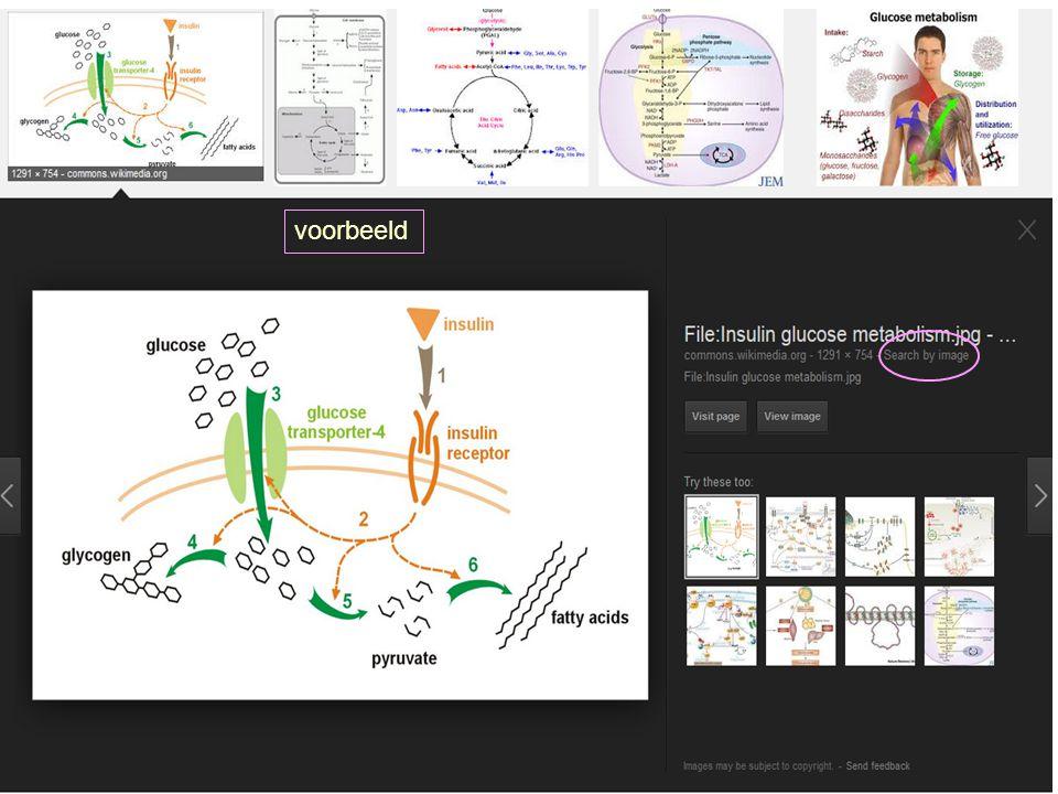 voorbeeld 26 zoeken van beeld, geluid en multimedia - juni 2014