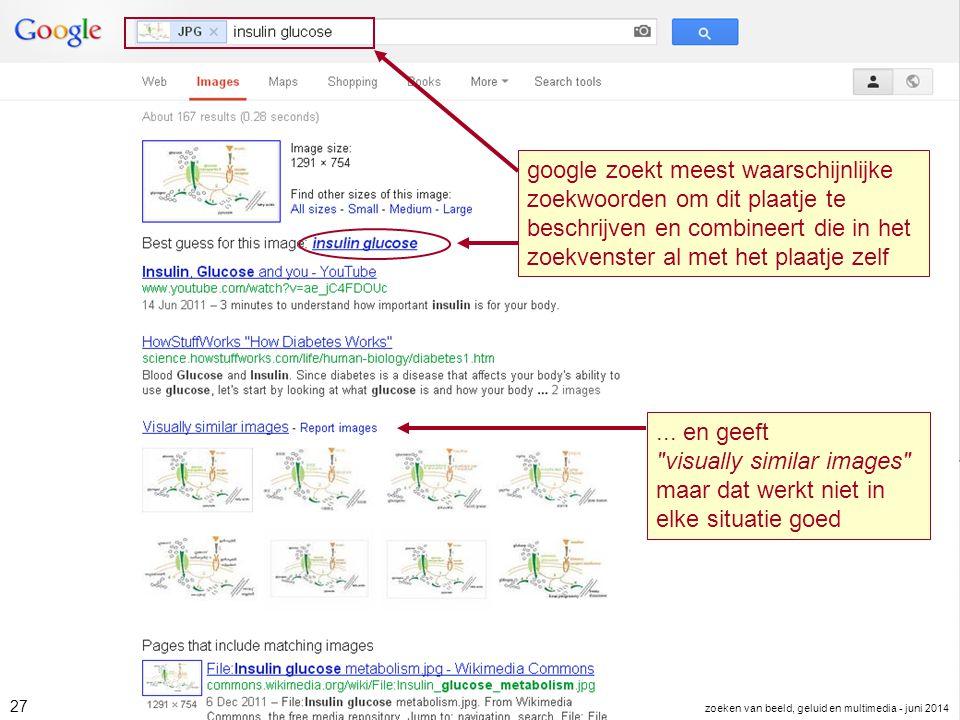 google zoekt meest waarschijnlijke zoekwoorden om dit plaatje te