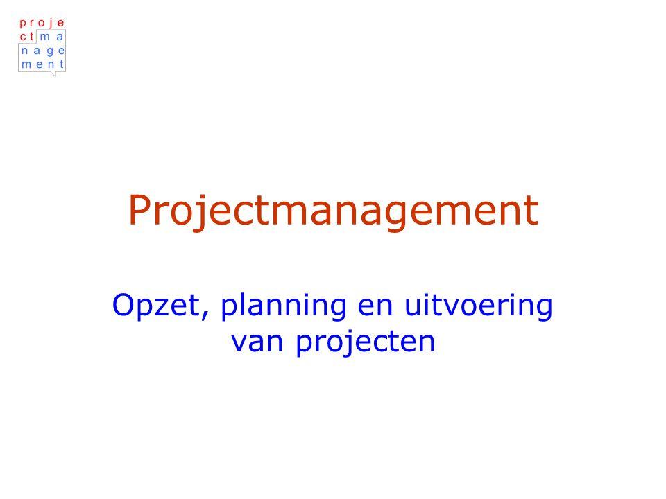 Opzet, planning en uitvoering van projecten