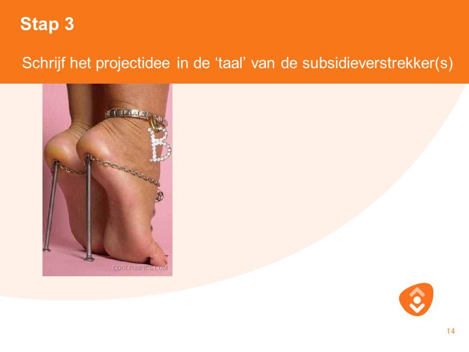 Stap 3 Schrijf het projectidee in de 'taal' van de subsidieverstrekker(s) 18-10-2010