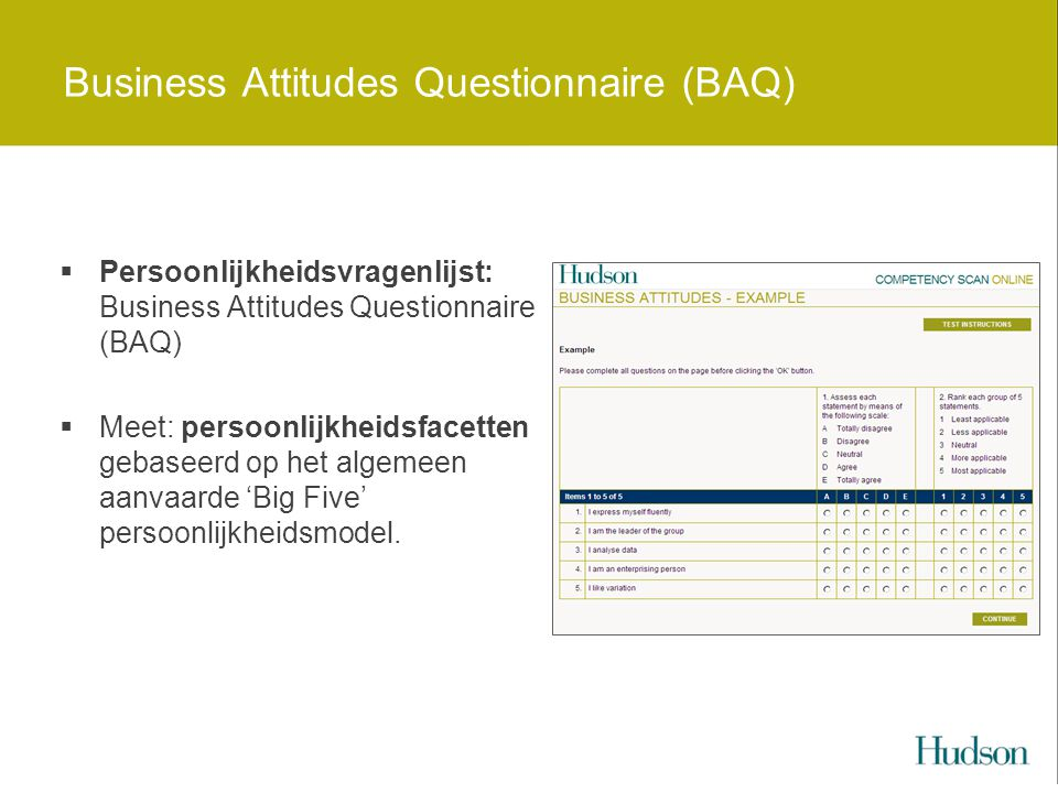 Business Attitudes Questionnaire (BAQ)