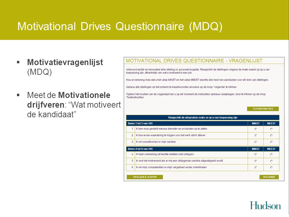 Motivational Drives Questionnaire (MDQ)