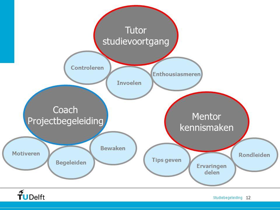 Tutor studievoortgang Coach Projectbegeleiding Mentor kennismaken