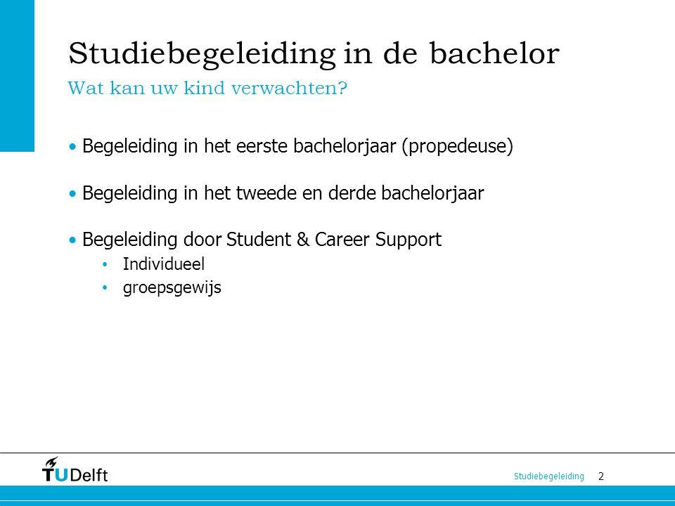 Studiebegeleiding in de bachelor