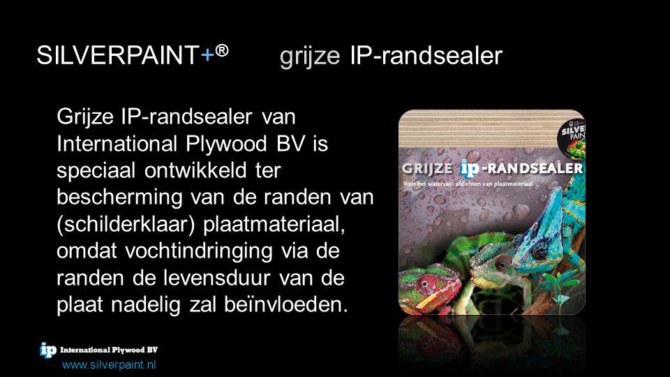SILVERPAINT+® grijze IP-randsealer