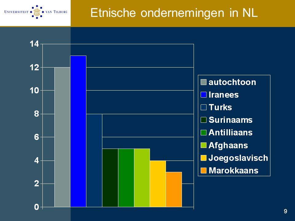 Etnische ondernemingen in NL
