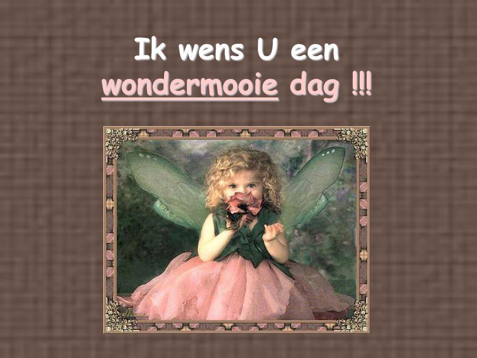 Ik wens U een wondermooie dag !!!
