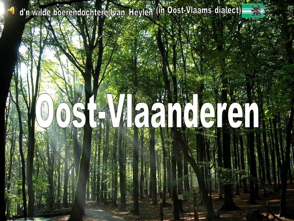 Oost-Vlaanderen (in Oost-Vlaams dialect)