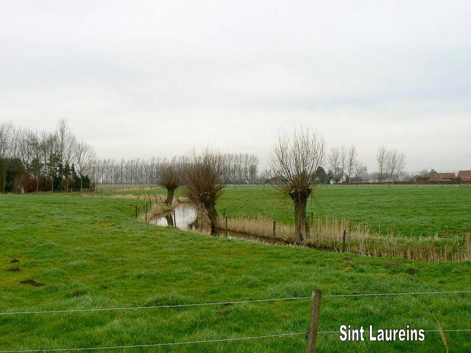 Sint Laureins