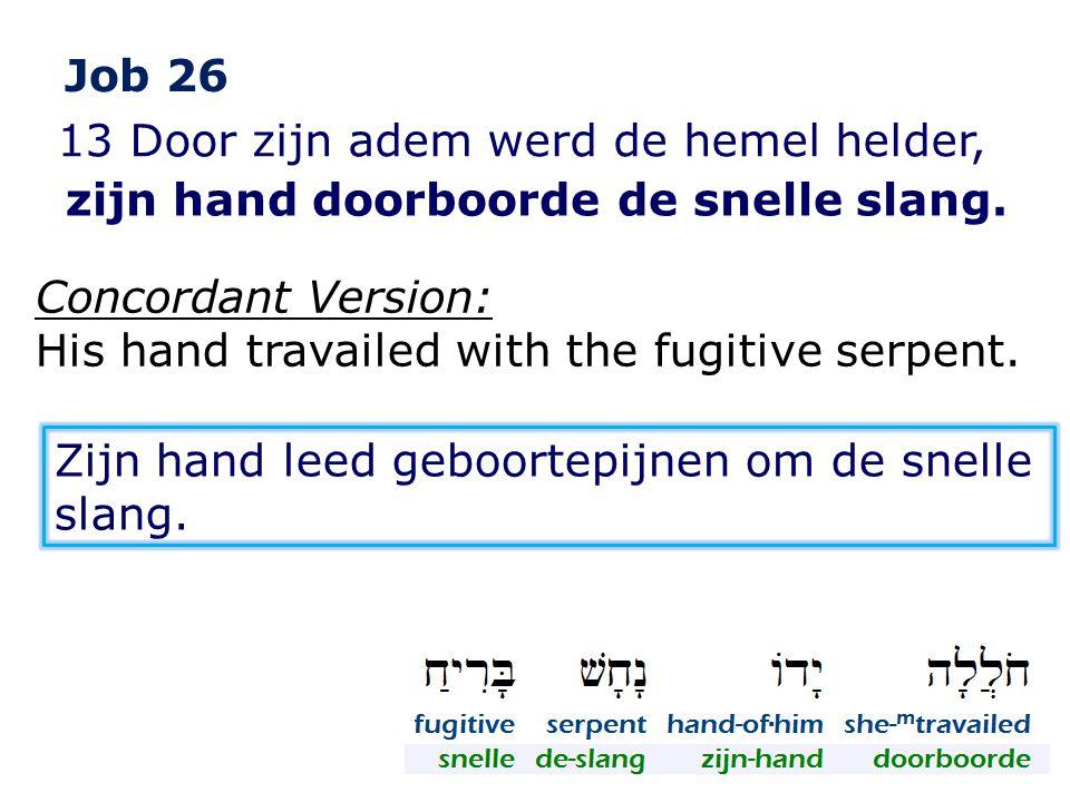 Job 26 13 Door zijn adem werd de hemel helder, zijn hand doorboorde de snelle slang. Concordant Version:
