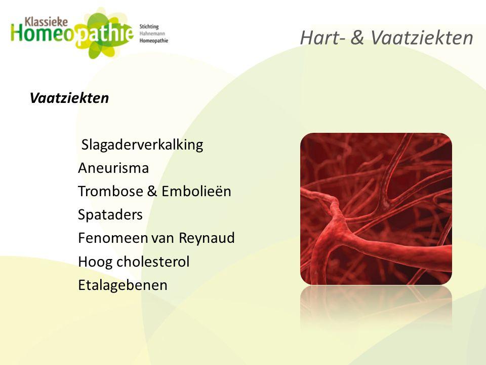 Hart- & Vaatziekten Vaatziekten Slagaderverkalking Aneurisma Trombose & Embolieën Spataders Fenomeen van Reynaud Hoog cholesterol Etalagebenen