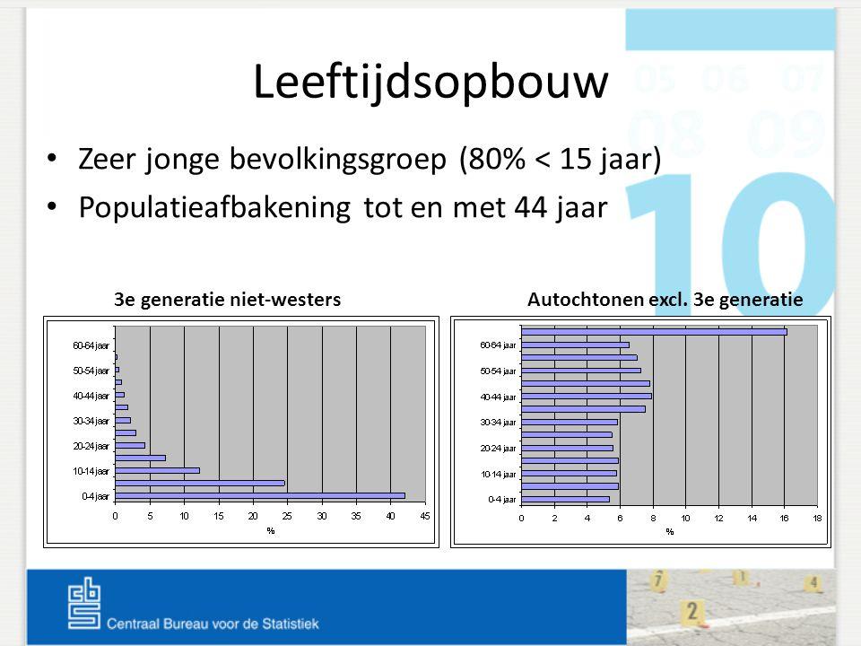 Leeftijdsopbouw Zeer jonge bevolkingsgroep (80% < 15 jaar)