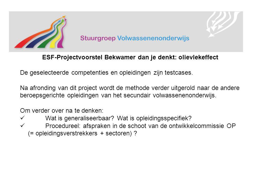 ESF-Projectvoorstel Bekwamer dan je denkt: olievlekeffect