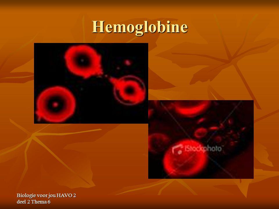 Hemoglobine Biologie voor jou HAVO 2 deel 2 Thema 6