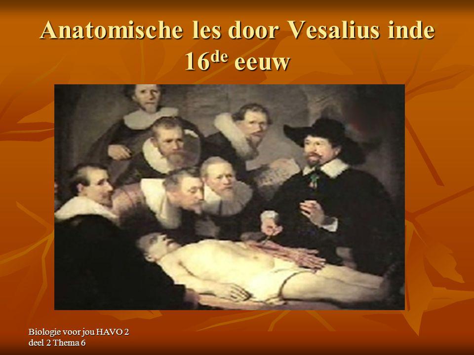 Anatomische les door Vesalius inde 16de eeuw