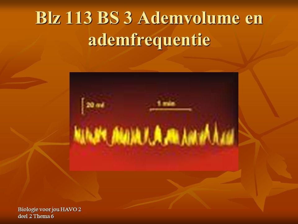 Blz 113 BS 3 Ademvolume en ademfrequentie