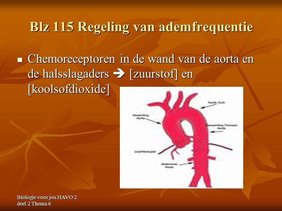 Blz 115 Regeling van ademfrequentie