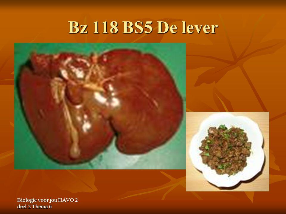 Bz 118 BS5 De lever Biologie voor jou HAVO 2 deel 2 Thema 6