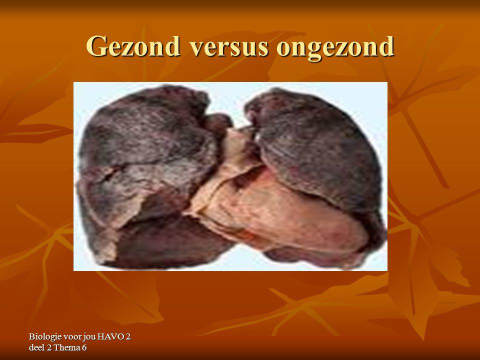 Gezond versus ongezond