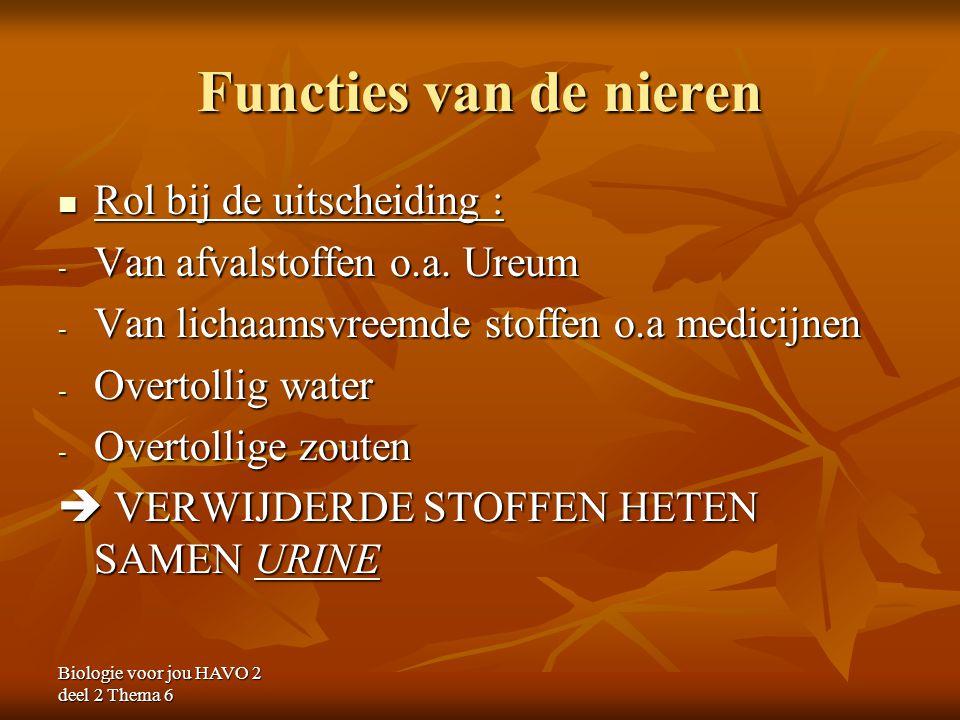 Functies van de nieren Rol bij de uitscheiding :