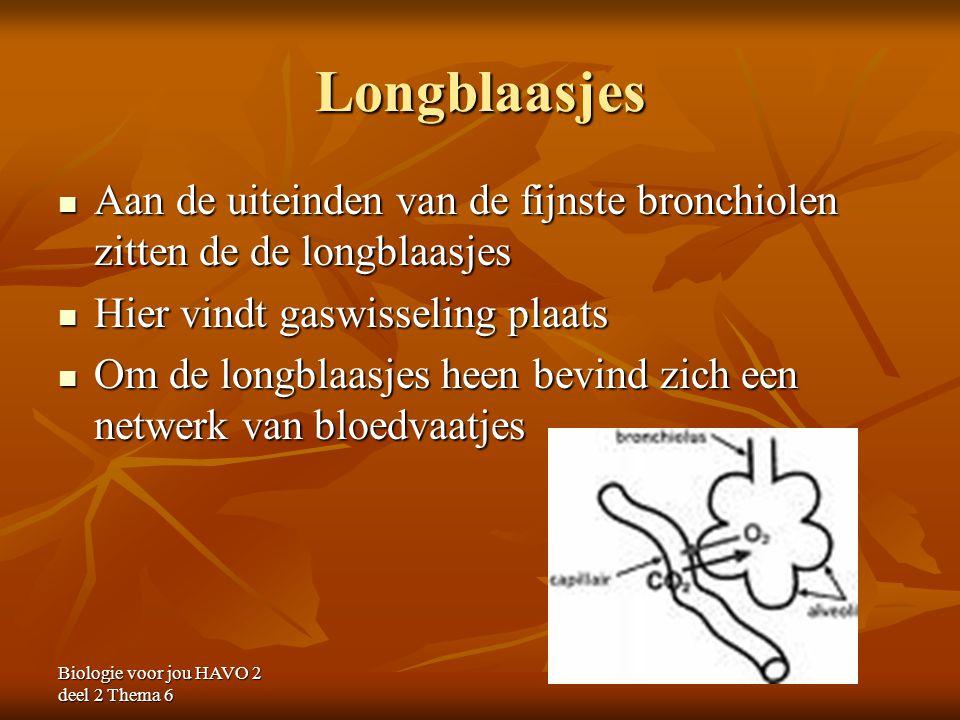 Longblaasjes Aan de uiteinden van de fijnste bronchiolen zitten de de longblaasjes. Hier vindt gaswisseling plaats.