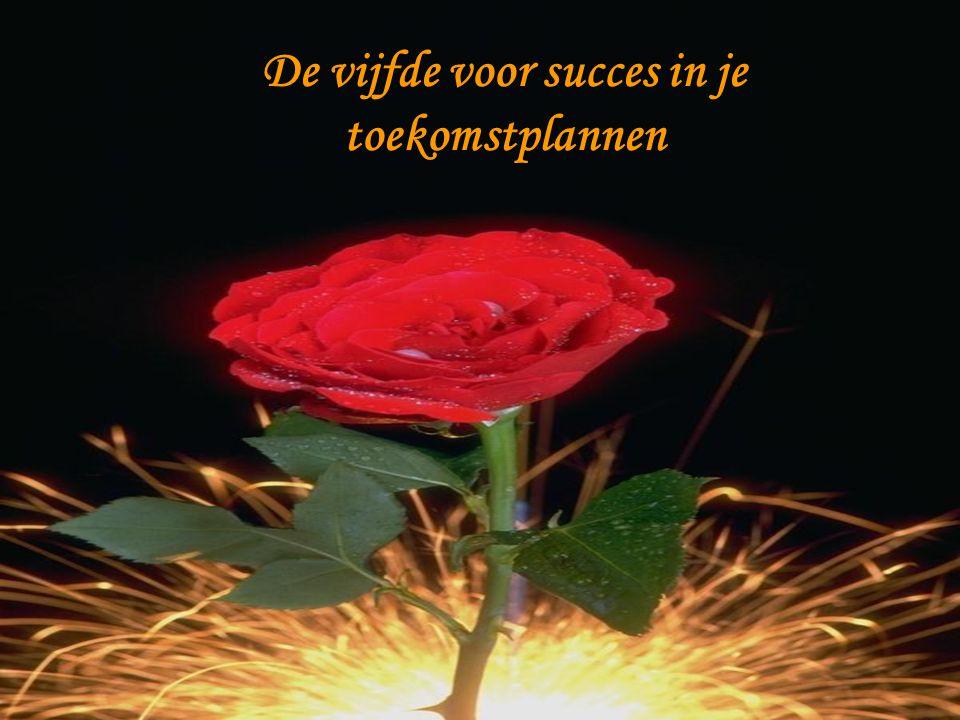 De vijfde voor succes in je toekomstplannen